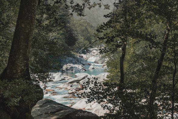 Vista del fiume verzasca lungo il Sentierone